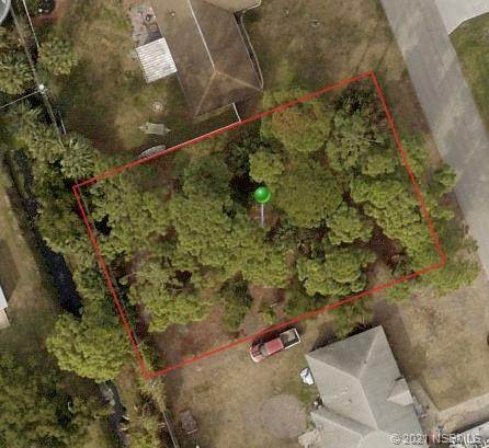 2610 India Palm Drive, Edgewater, FL 32141 (MLS #1064511) :: Florida Life Real Estate Group