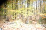 19 Balsam Trail - Photo 3