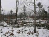 10560 Stevenson Lake Road - Photo 5