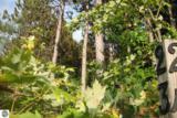 23 lot Scenic Woods Circle - Photo 1