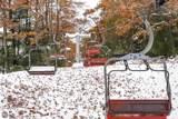 24 Stony Brook - Photo 23