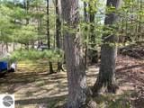 333 Scotch Pine Drive - Photo 21