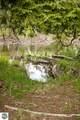 5757 Treesong Lane - Photo 11