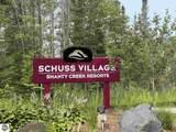 6687 Schuss Mountain Lane - Photo 2