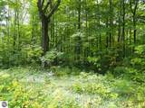 4 White Birch Trail - Photo 3