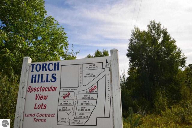 0 Torch Hills Lane, Rapid City, MI 49676 (MLS #1806080) :: Brick & Corbett