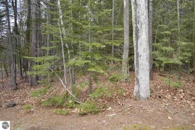 Lot 14 Ottawa Trail, Kewadin, MI 49648 (MLS #1811099) :: Brick & Corbett