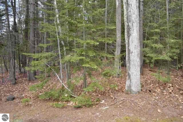 Lot 14 & 15 Ottawa Trail, Kewadin, MI 49648 (MLS #1811105) :: Brick & Corbett