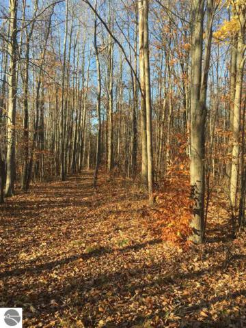 00 Acorn Ridge Trail, Beulah, MI 49617 (MLS #1826079) :: CENTURY 21 Northland