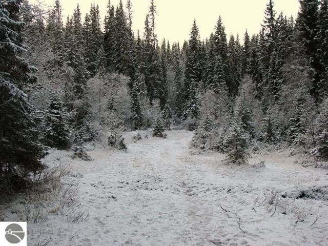 79 Betsie Creek Drive, Interlochen, MI 49643 (MLS #1827062) :: CENTURY 21 Northland