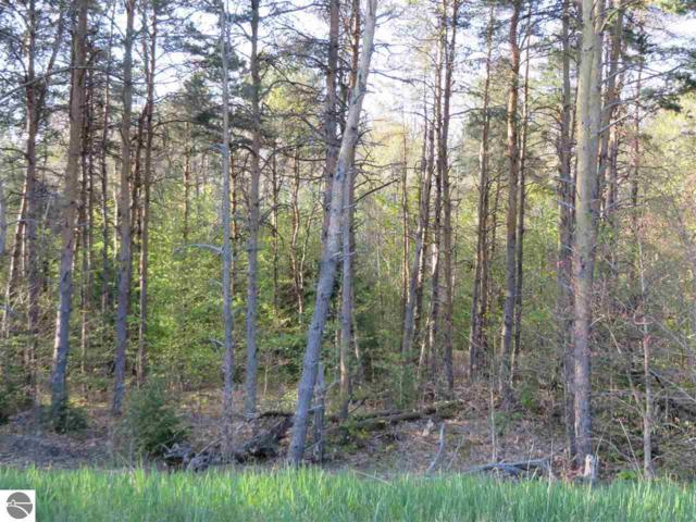 101 Betsie Creek Drive, Interlochen, MI 49643 (MLS #1827090) :: Team Dakoske | RE/MAX Bayshore