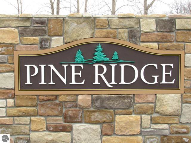 1498 White Pine Drive, Mt Pleasant, MI 48858 (MLS #1829501) :: Michigan LifeStyle Homes Group