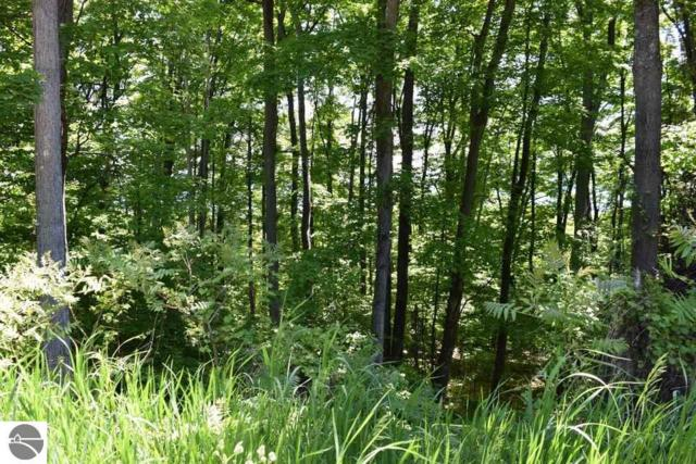 0 S Bay View Trail, Suttons Bay, MI 49682 (MLS #1834477) :: Michigan LifeStyle Homes Group