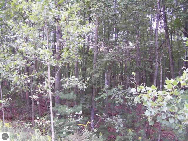 TBD N Circle E, Farwell, MI 48622 (MLS #1837896) :: Boerma Realty, LLC