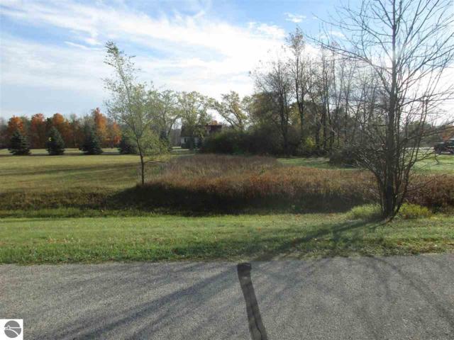 1018 Fairway Drive, Weidman, MI 48893 (MLS #1839873) :: Boerma Realty, LLC