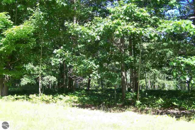 0 Huron Woods Drive, Tawas City, MI 48763 (MLS #1840378) :: Michigan LifeStyle Homes Group