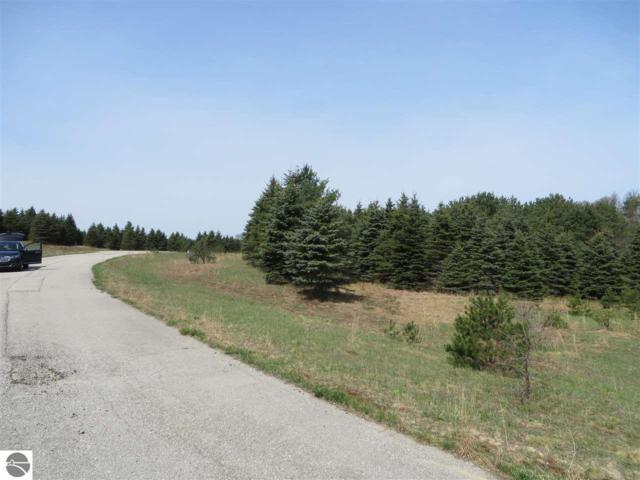 10935 Spruce Hollow Trace, Fife Lake, MI 49633 (MLS #1846130) :: Michigan LifeStyle Homes Group