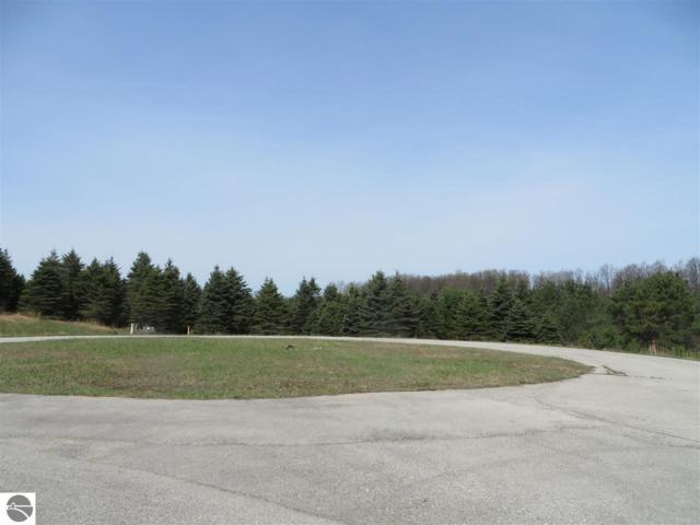 4 Spruce Hollow Trace, Fife Lake, MI 49633 (MLS #1846132) :: Michigan LifeStyle Homes Group