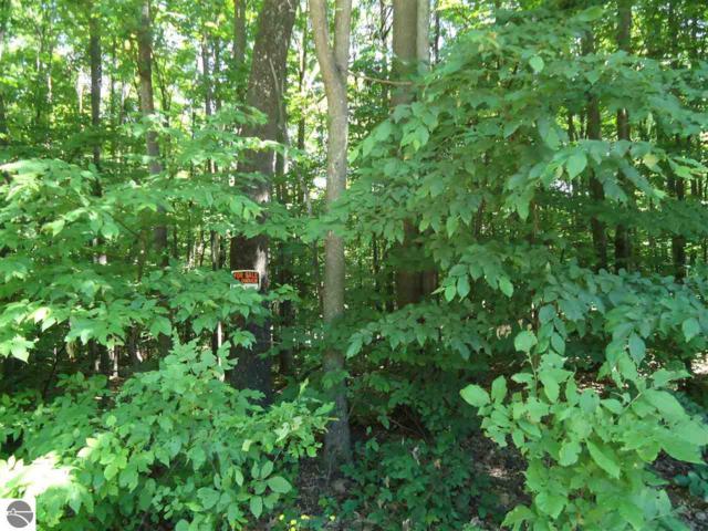 Alpenhaus Lane, Bellaire, MI 49615 (MLS #1849366) :: Brick & Corbett
