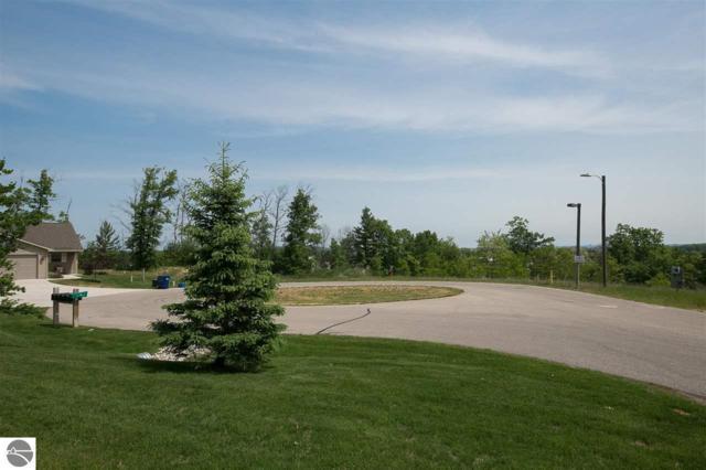 1181 Terrace Bluff Drive, Traverse City, MI 49686 (MLS #1850179) :: Team Dakoske | RE/MAX Bayshore