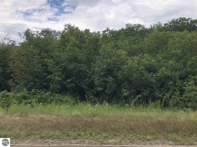 TBD S Coldwater Road, Remus, MI 49340 (MLS #1850384) :: Boerma Realty, LLC