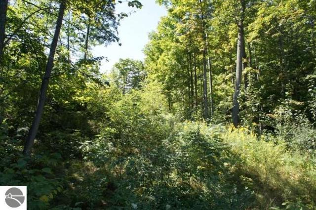 9360 E Creekside Trail, Traverse City, MI 49684 (MLS #1853060) :: Michigan LifeStyle Homes Group