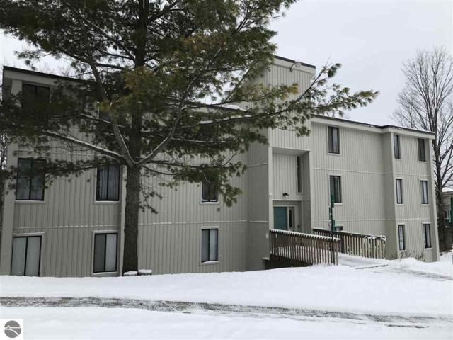 11002 S Blue Ridge Lane #21, Traverse City, MI 49684 (MLS #1855636) :: Team Dakoske | RE/MAX Bayshore