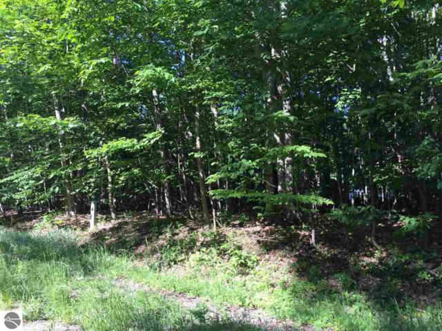 Lot 54 Cherokee Trail, Kewadin, MI 49648 (MLS #1856111) :: Brick & Corbett