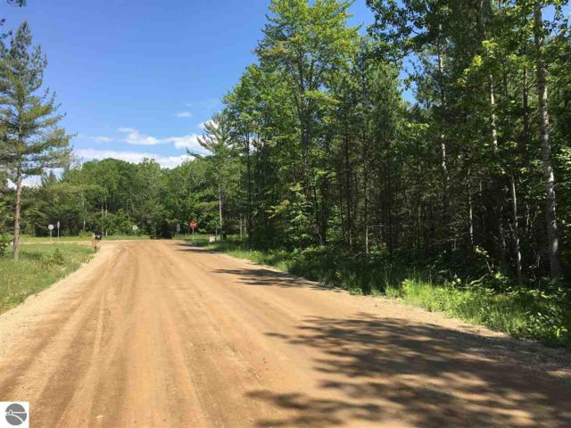 Blair Townhall Road, Grand Traverse, MI 49685 (MLS #1856345) :: Team Dakoske | RE/MAX Bayshore