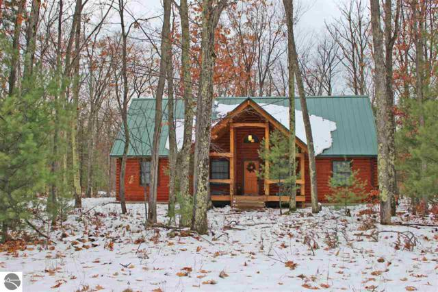 5252 State Park Highway, Interlochen, MI 49643 (MLS #1856571) :: Team Dakoske | RE/MAX Bayshore