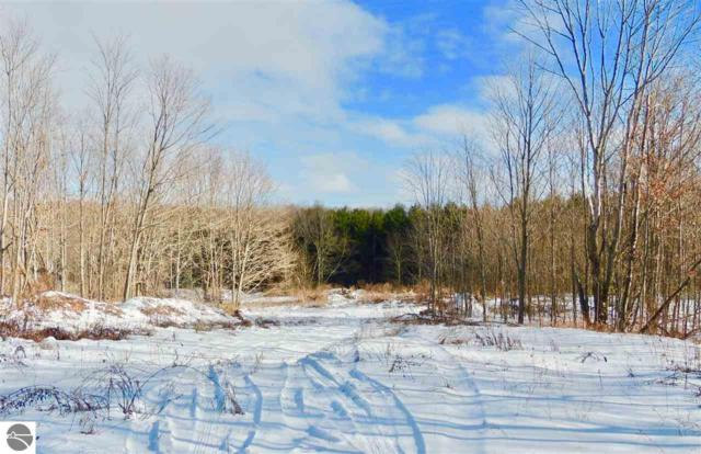 0000 Snell Road, Frankfort, MI 49635 (MLS #1856657) :: Team Dakoske | RE/MAX Bayshore