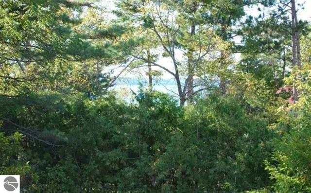 Lot  174 Ottawa Street, Elk Rapids, MI 49629 (MLS #1857302) :: Team Dakoske | RE/MAX Bayshore