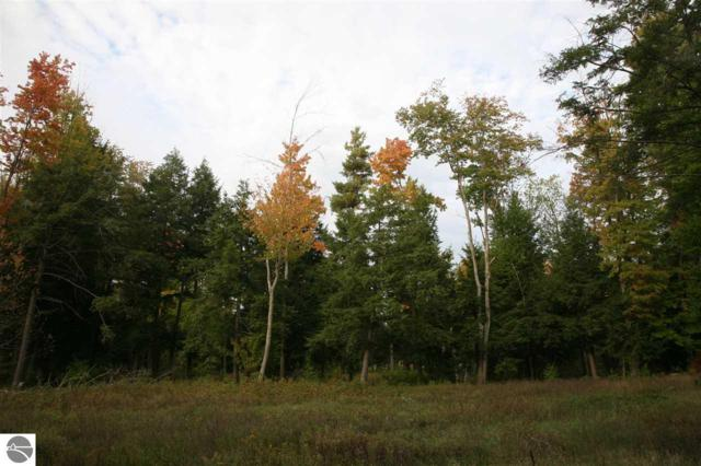 15 lot Scenic Woods Circle, Cadillac, MI 49601 (MLS #1859402) :: CENTURY 21 Northland
