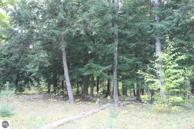 17 lot Scenic Woods Circle, Cadillac, MI 49601 (MLS #1859404) :: CENTURY 21 Northland
