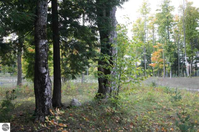 18 lot Scenic Woods Circle, Cadillac, MI 49601 (MLS #1859405) :: CENTURY 21 Northland