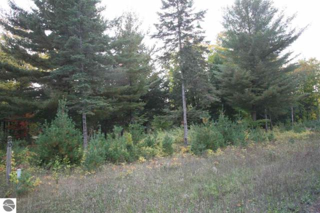 19 lot Scenic Woods Circle, Cadillac, MI 49601 (MLS #1859406) :: CENTURY 21 Northland