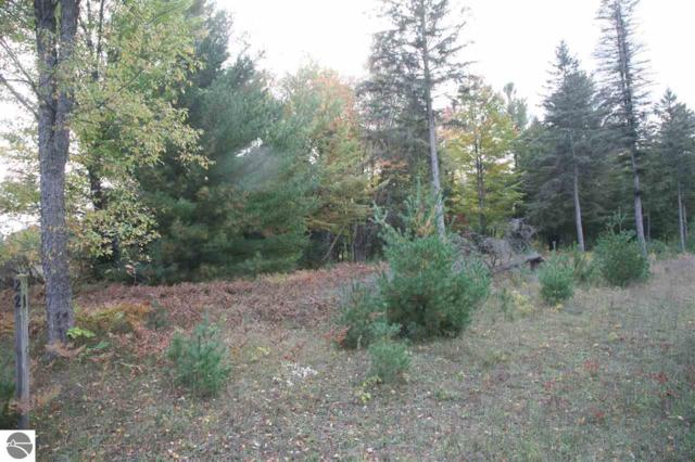 21 lot Scenic Woods Circle, Cadillac, MI 49601 (MLS #1859410) :: CENTURY 21 Northland