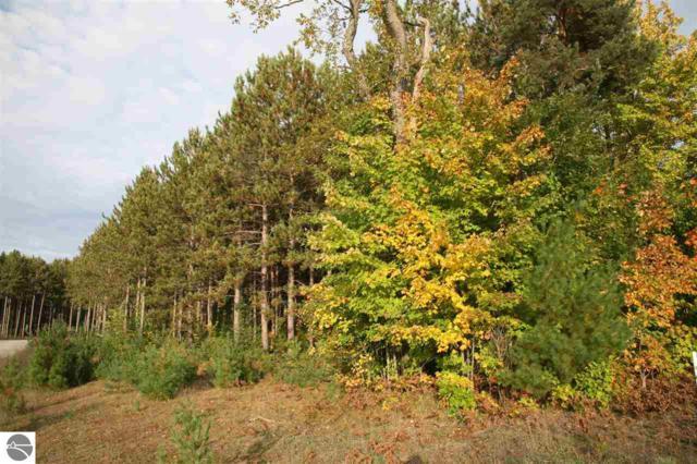 24 lot Scenic Woods Circle, Cadillac, MI 49601 (MLS #1859413) :: Boerma Realty, LLC
