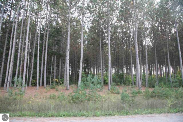 25 lot Scenic Woods Circle, Cadillac, MI 49601 (MLS #1859417) :: Brick & Corbett