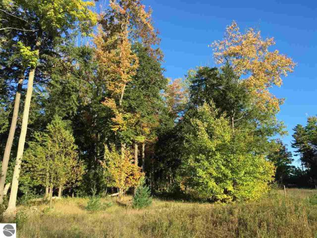 1-26 LOT Scenic Woods Circle, Cadillac, MI 49601 (MLS #1859423) :: CENTURY 21 Northland