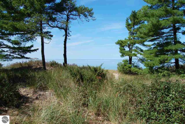 3 Beach Comber, Glen Arbor, MI 49636 (MLS #1859475) :: Team Dakoske   RE/MAX Bayshore