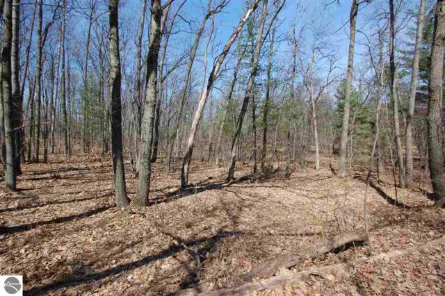 Parcel 13 Logging Trail, West Branch, MI 48661 (MLS #1859705) :: Team Dakoske | RE/MAX Bayshore