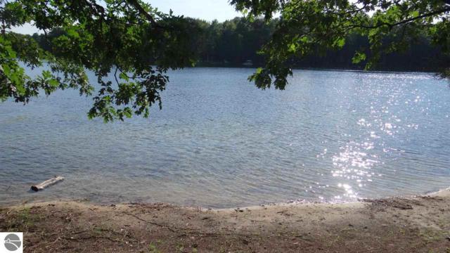 TBD E Sanford Lake Drive, Lake Ann, MI 49650 (MLS #1861510) :: Team Dakoske | RE/MAX Bayshore