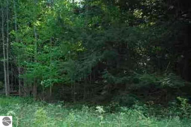 Lot 314 Michigan Trail, Kewadin, MI 49648 (MLS #1863242) :: Boerma Realty, LLC