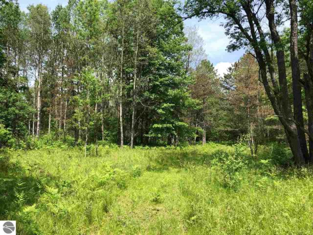00 Caberfae Highway, Wellston, MI 49689 (MLS #1863280) :: CENTURY 21 Northland