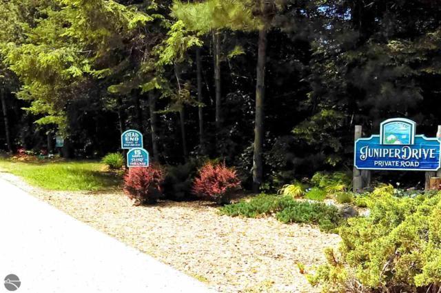 Juniper Drive, Kewadin, MI 49648 (MLS #1863648) :: Team Dakoske | RE/MAX Bayshore