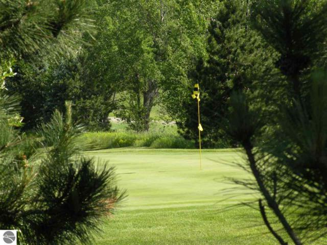 TBD Golf Meadows Drive, Bellaire, MI 49615 (MLS #1863654) :: Michigan LifeStyle Homes Group