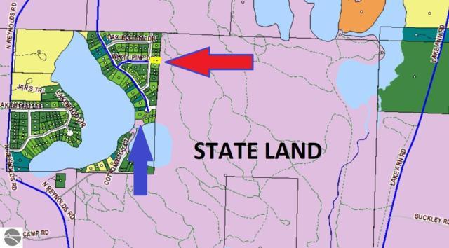 Lot 141 Maplewood Drive, Lake Ann, MI 49650 (MLS #1863673) :: Team Dakoske | RE/MAX Bayshore