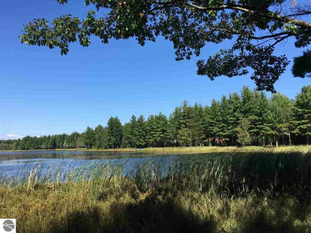 lot 15 Blue Heron Drive, Kalkaska, MI 49646 (MLS #1864242) :: Team Dakoske | RE/MAX Bayshore
