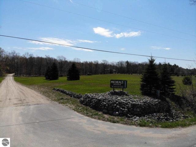 S Micheals Woods Trail, Maple City, MI 49664 (MLS #1865290) :: Boerma Realty, LLC